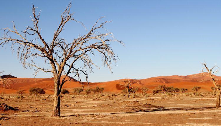 africa siccità