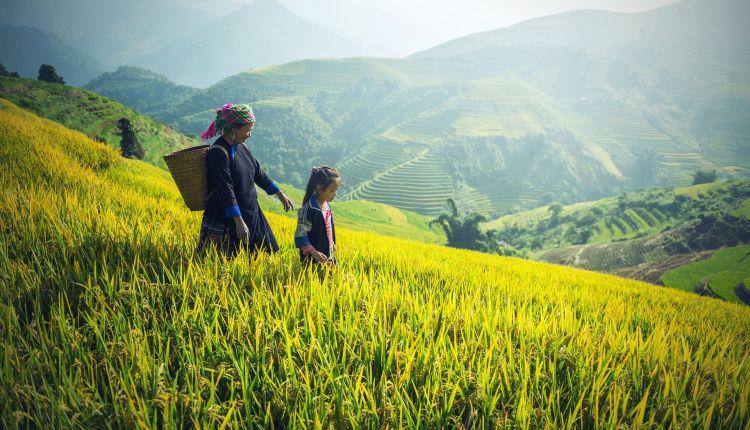 diritti dei contadini