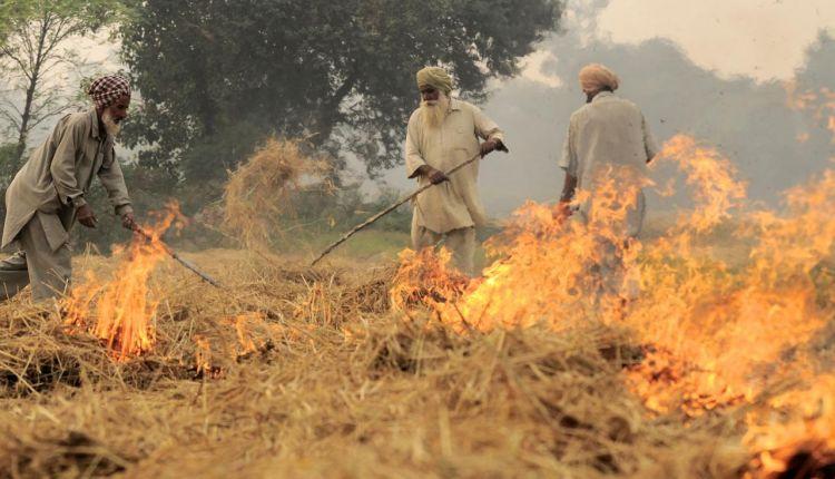 india inquinamento ambientale