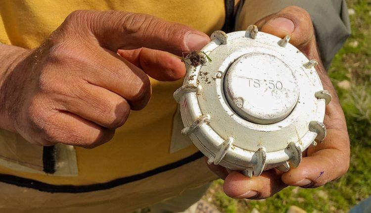 che aspetto hanno le mine antiuomo