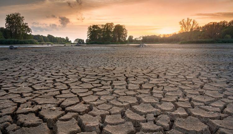 cambiamenti climatici conseguenze
