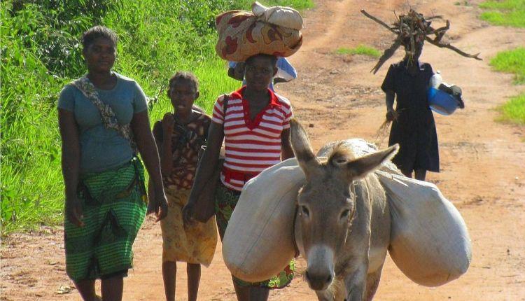 Mozambico: abbandonato a fame e violenza a un anno dai cicloni