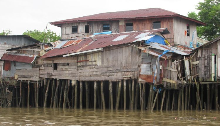 papua occidentale nuova guinea