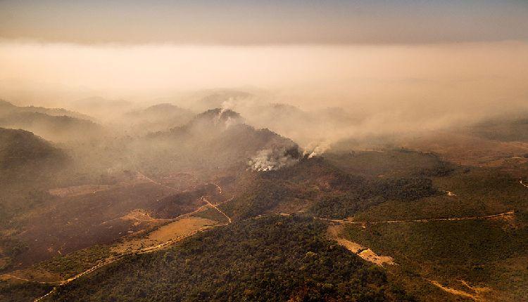 amazzonia in fiamme 2020