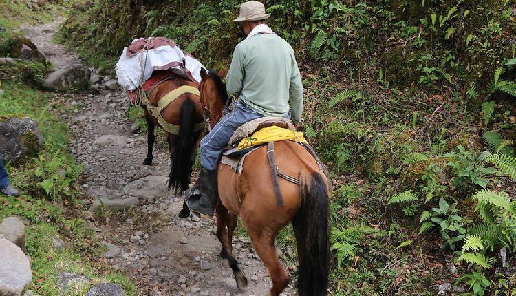 paramilitari di destra colombiani