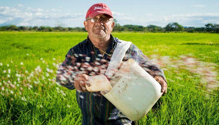 lavoratori stranieri in agricoltura usa