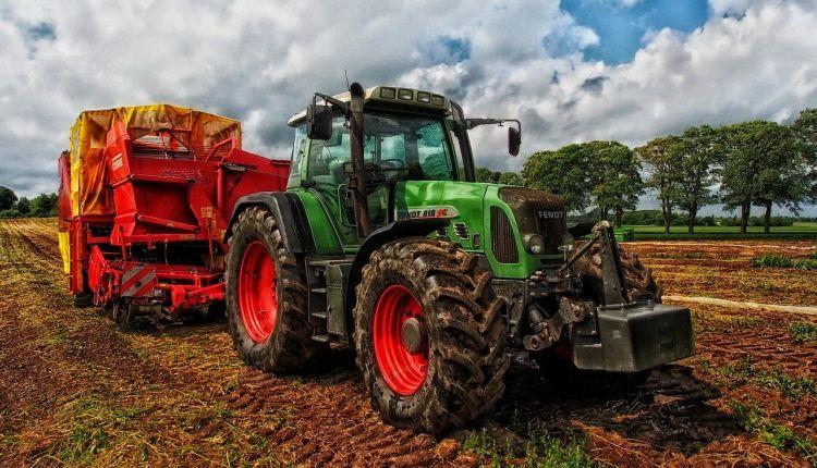 sistemi alimentari sostenibili roma